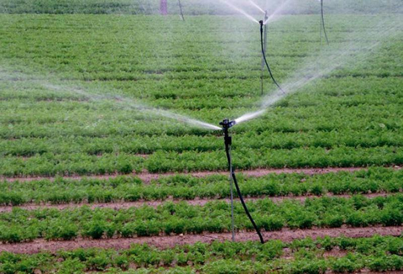 Tipos de riego clasificaci n ventajas e inconvenientes for Aspersores de agua para jardin
