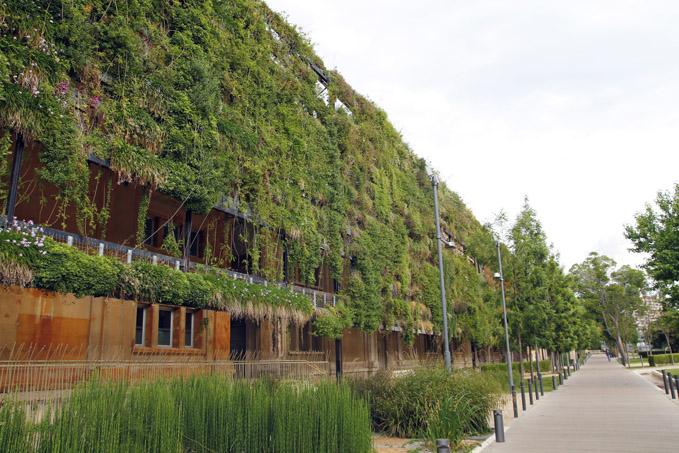 Curso de jardiner a vertical for Aprender jardineria